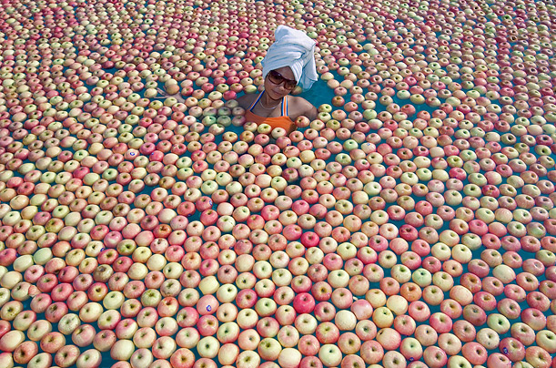A model in a pool of apples in Malaysia.