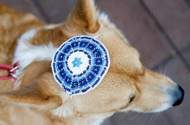 Good Dog