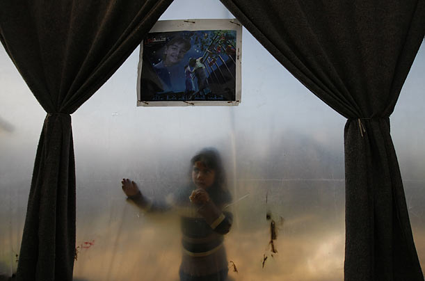Looking In