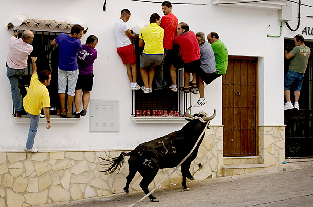 Close Call